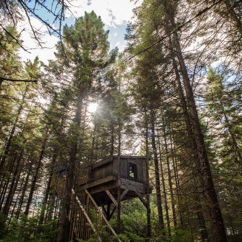 Cabanitas et forêt